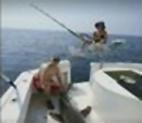 Brian Storch shark attack
